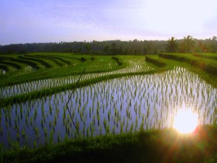 Indonesiasep9_311ablog